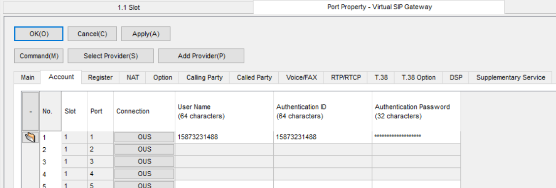 Screenshot - Panasonic Port Property Virtual SIP Gateway Account